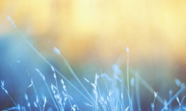 Duchu Święty przyjdź… J 20, 19-23